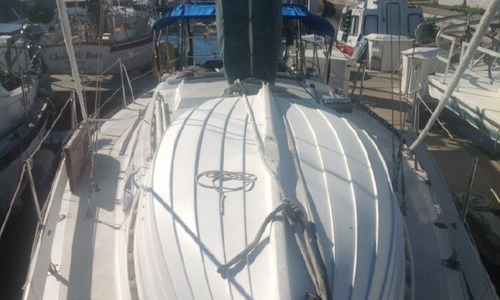 Image of Islander 32-2 for sale in United States of America for $23,900 (£17,644) Port Charlotte, Florida, United States of America