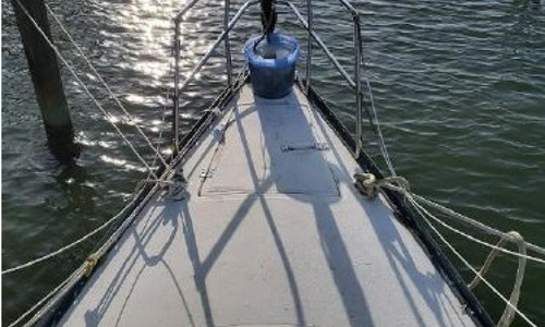 Image of Hunter 30 Sloop for sale in United States of America for $15,900 (£12,482) Saint Petersburg, Florida, United States of America