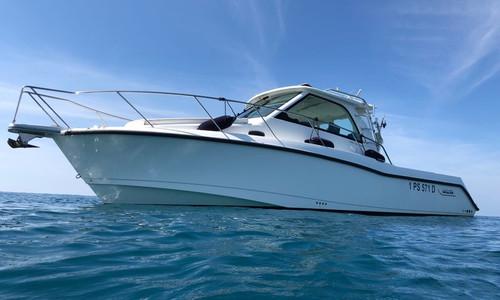 Image of Boston Whaler Conquest 345 for sale in Italy for €155,000 (£141,266) Viareggio, , Italy