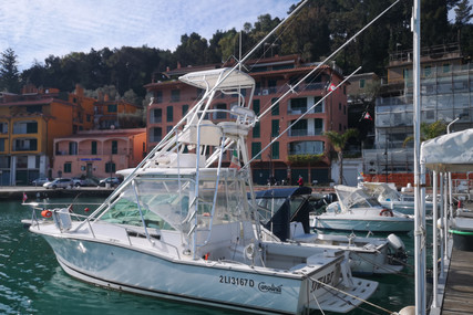 Carolina Skiff 28 for sale in Italy for €125,000 (£113,924)