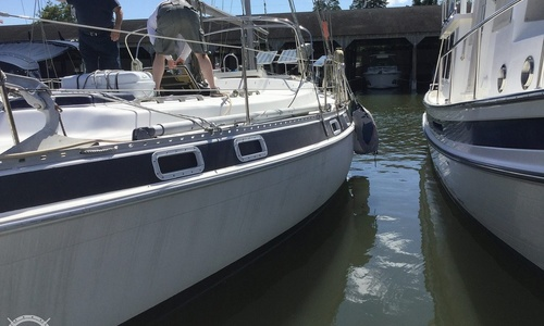 Image of Morgan Out Island 415 for sale in United States of America for $55,600 (£40,934) Gloucester Point, Virginia, United States of America