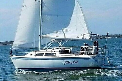 Catalina 270LE for sale in United States of America for $31,200 (£24,191)