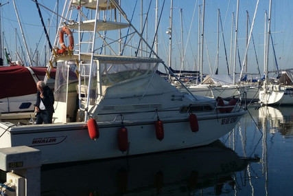 Boston Whaler 31 for sale in Italy for €55,000 (£49,010)