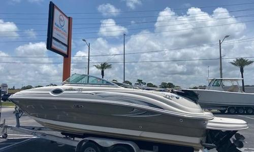 Image of Sea Ray 240 Sundeck for sale in United States of America for $29,900 (£21,814) Tampa, FL, United States of America
