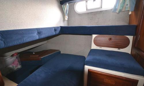 Image of Sealine 305 Statesman for sale in United Kingdom for £27,950 Southampton, United Kingdom