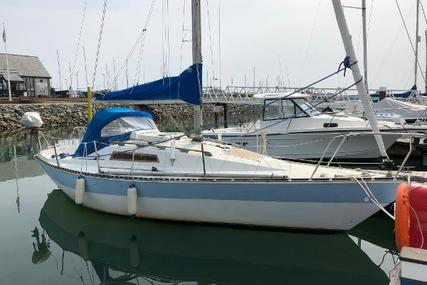Trapper 300 for sale in United Kingdom for £6,495