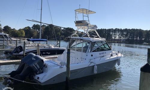 Image of Everglades 320 EX for sale in United States of America for $187,500 (£135,756) Onancock, Virginia, United States of America