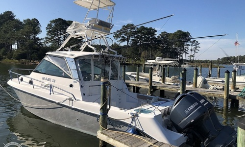 Image of Everglades 320 EX for sale in United States of America for $187,500 (£137,174) Onancock, Virginia, United States of America