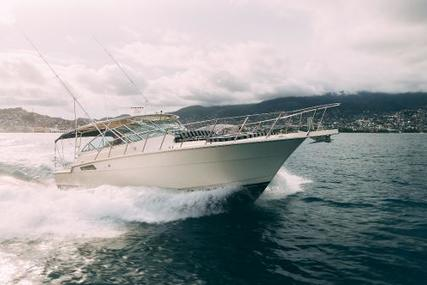 Hatteras 43 for sale in Mexico for $129,000 (£93,252)