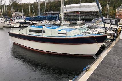 Custom Samspeed for sale in United Kingdom for £9,995