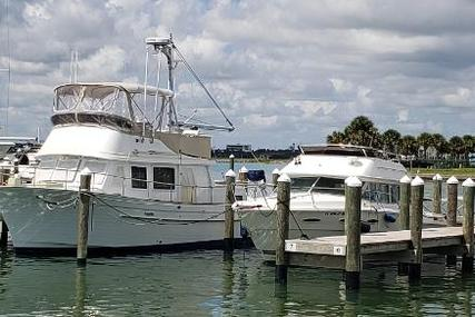 Albin Trawler for sale in United States of America for $64,900 (£46,794)