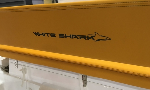 Image of White Shark 246 for sale in United Kingdom for £72,204 South West, Poole, United Kingdom