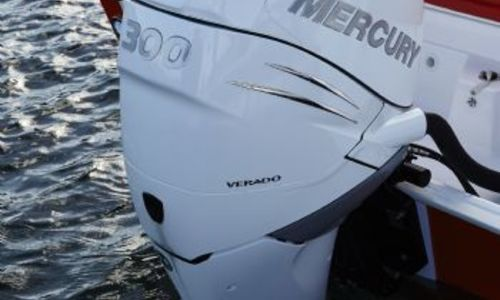 Image of White Shark 246 CC for sale in United Kingdom for £72,204 South West, Poole, United Kingdom