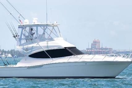 Bertram Convertible for sale in United States of America for $519,000 (£389,379)