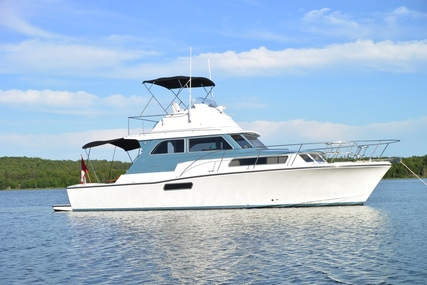 Bertram Sport Fisherman for sale in United States of America for $395,000 (£280,120)