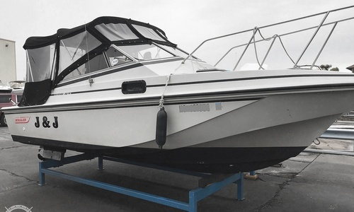 Image of Boston Whaler Revenge 20 W.T. for sale in United States of America for $24,000 (£17,260) Harrison Township, Michigan, United States of America