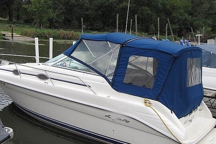 Sea Ray 250 Sundancer for sale in United States of America for $19,500 (£14,632)