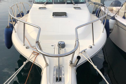 Pursuit OS 335 Offshore for sale in Italy for €125,000 (£111,231)