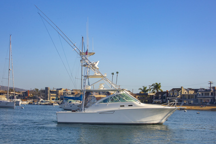 CABO 35 Express for sale in United States of America for $225,000 (£161,580)