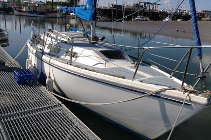 Jaguar Yachts 25 for sale in United Kingdom for £5,000