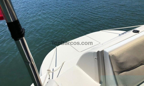 Image of Sea Ray 240 Sundeck for sale in Spain for €19,000 (£16,472) Real Club Náutico de Palma, PALMA DE MALLORCA, Islas Baleares, Mallorca, , Spain