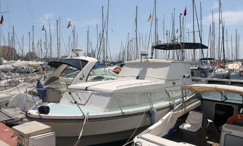 Image of Birchwood 33 for sale in Spain for €26,000 (£22,462) Torrevieja, Spain