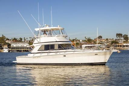 Riviera 43 Open Flybridge for sale in United States of America for $283,000 (£206,396)