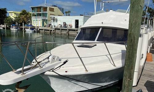 Image of Bertram 33 Flybridge Cruiser for sale in United States of America for $29,000 (£20,492) Marathon, Florida, United States of America