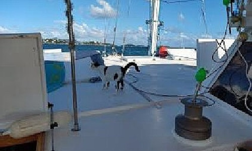Image of Piver Trimaran 50 for sale in United States of America for $156,000 (£112,770) St Thomas, Virgin Islands, United States of America
