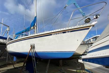 Gib'sea 84 for sale in United Kingdom for £14,000