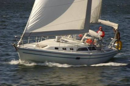 Catalina 34 MkII for sale in United States of America for $59,900 (£42,944)