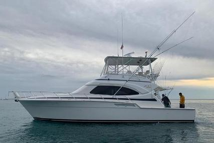 Bertram 450 Convertible for sale in United States of America for $355,000 (£251,753)