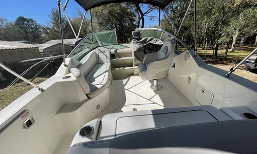 Image of Sea Ray 240 Sundancer for sale in United States of America for $49,950 (£35,771) Trinity, Florida, United States of America