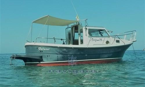 Image of Parente DELFINO 7.5 CABIN for sale in France for €39,000 (£33,575) Corsica, France