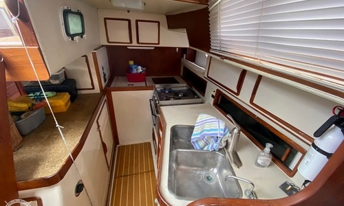 Image of Irwin Yachts 38 Mark II for sale in United States of America for $41,995 (£30,153) Riviera Beach, Florida, United States of America