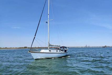 Custom Built Duellist 32 for sale in United Kingdom for £14,995