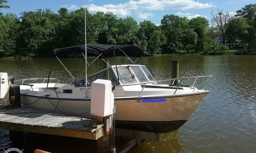 Image of Shamrock 20 Walkthrough Cuddy for sale in United States of America for $12,750 (£9,290) West River, Maryland, United States of America