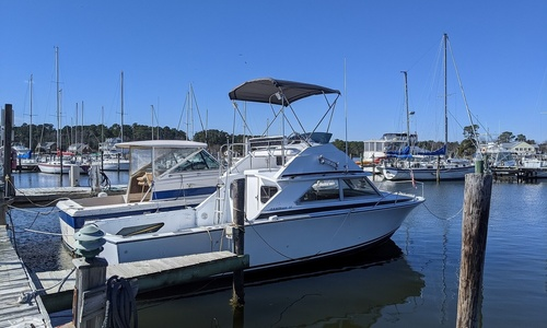 Image of Bertram Flybridge for sale in United States of America for $19,000 (£13,607) Hayes, Virginia, United States of America