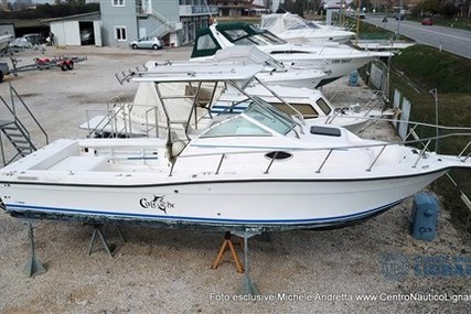 SPORT CRAFT 252 FISHMASTER WA for sale in Italy for €17,500 (£15,072)