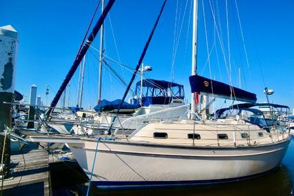 Island Packet 350 for sale in United States of America for $125,750 (£91,745)
