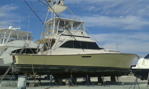 Image of Ocean Yachts Super Sport 55 for sale in United States of America for $129,000 (£94,116) Fort Pierce, Florida, United States of America
