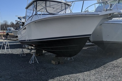 Luhrs Tournament 290 Open for sale in United States of America for $41,900 (£29,858)