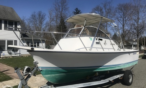 Image of Shamrock 200 Predator for sale in United States of America for $17,900 (£12,940) Pompton Lakes, New Jersey, United States of America