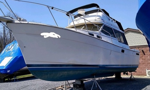Image of Bayliner 3270 Motor Yacht for sale in United States of America for $15,000 (£10,637) Montour Falls, New York, United States of America