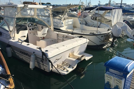 Proline 220 CUDDY FISH for sale in Italy for €14,000 (£12,092)