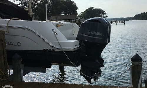 Image of Robalo R305 for sale in United States of America for $119,000 (£85,707) Cobb Island, Maryland, United States of America