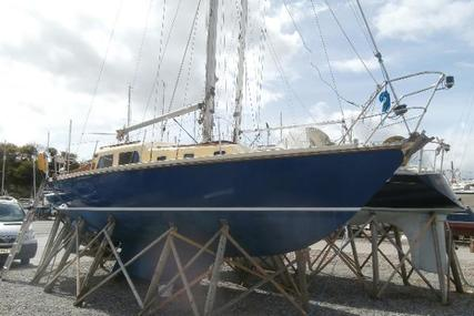 Contest 30 for sale in United Kingdom for £9,950