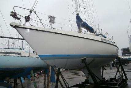Hallberg-Rassy 26 for sale in United Kingdom for £15,500