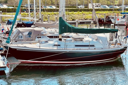 Nicholson 31 for sale in Netherlands for €44,500 (£38,310)
