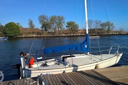 J Boats J24 for sale in United States of America for $11,250 (£7,985)